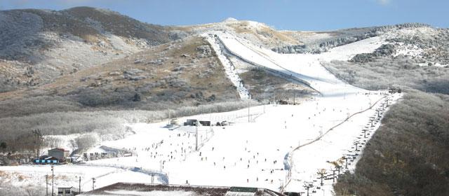 סקי ביפן