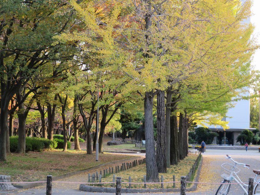 daisen-park3