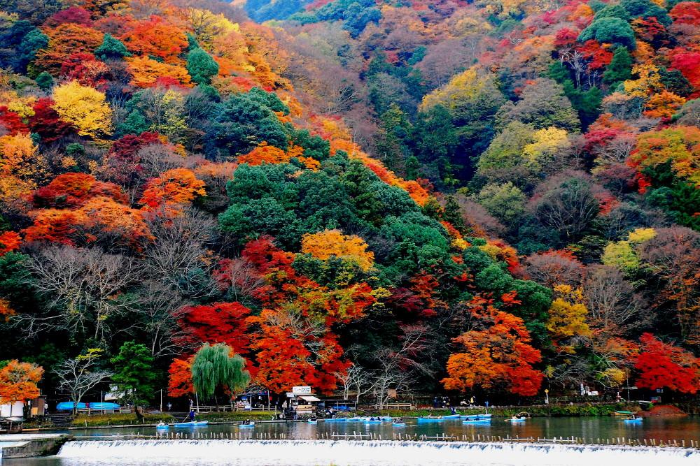 kyoto2arashiyama-1-day-pass