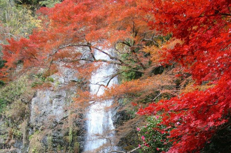 minoh-falls2