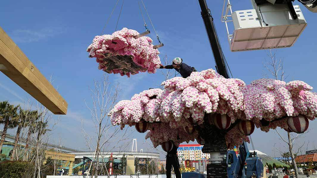 חברת לגו יצרה דגם של עץ דובדבנים ביפן העשוי מ-800,000 חלקים!