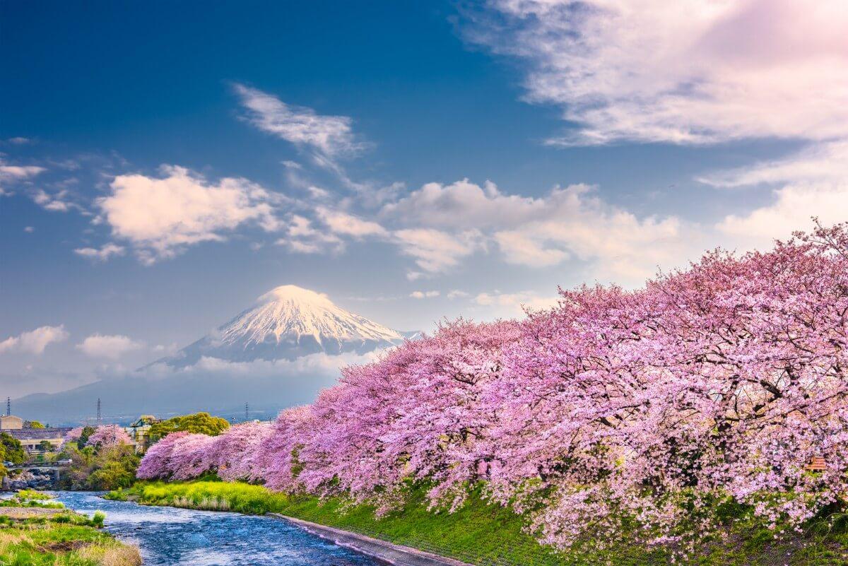 יפן בחודש מאי