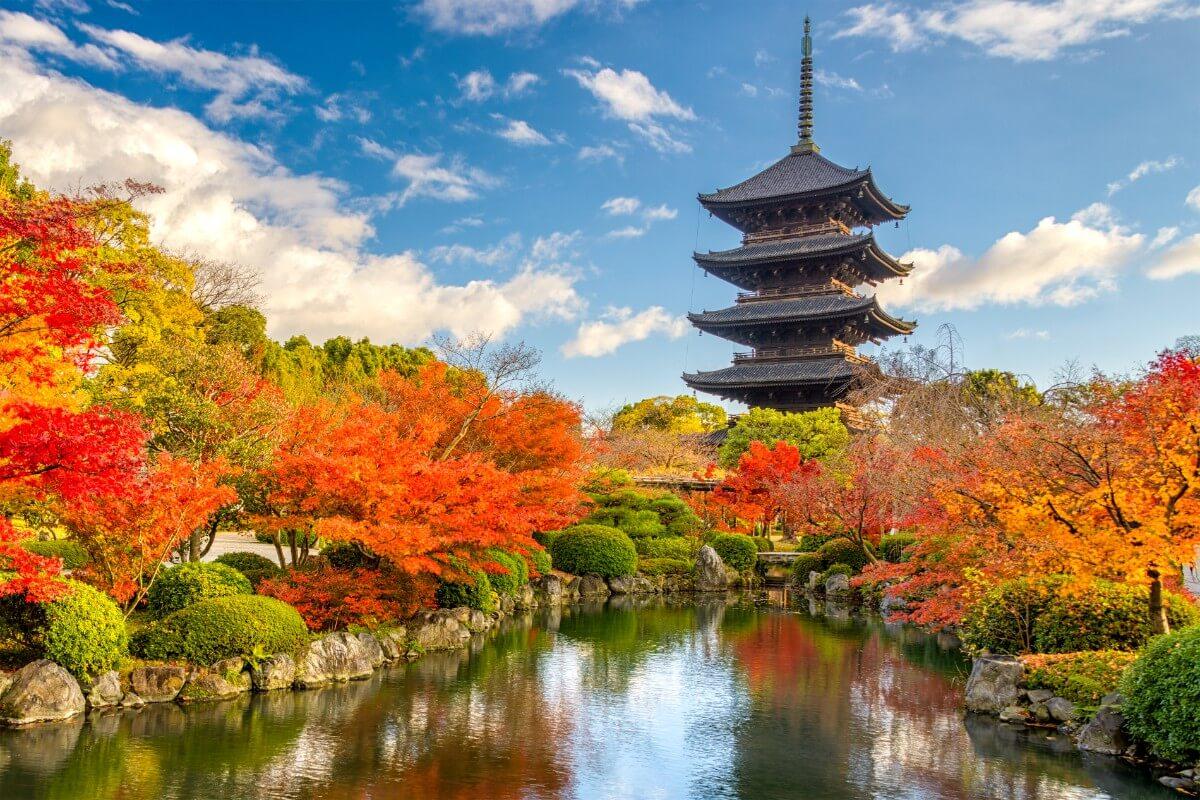 יפן בחודש נובמבר