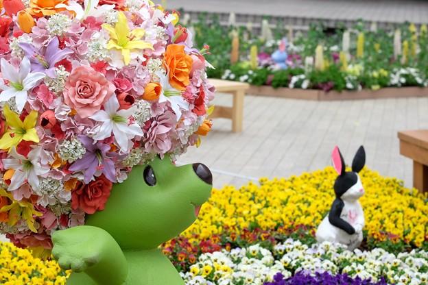 גן הפרח יוקוהמה – 29 במרץ ועד 21 לאפריל