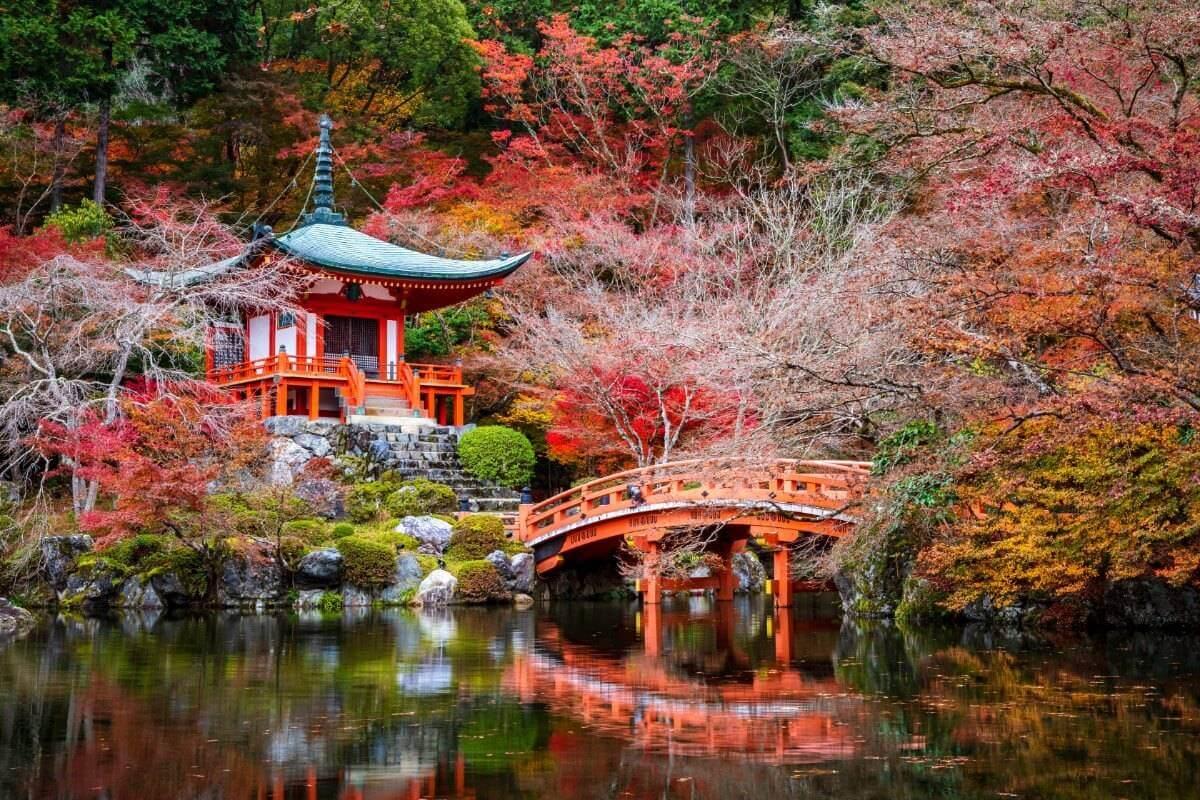 טיול סתיו ביפן