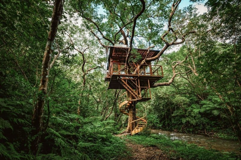אוקינאווה ומלון על צמרות העצים