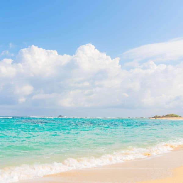 איי דרום מערב יפן מוכרזים כאתר מורשת טבע עולמית